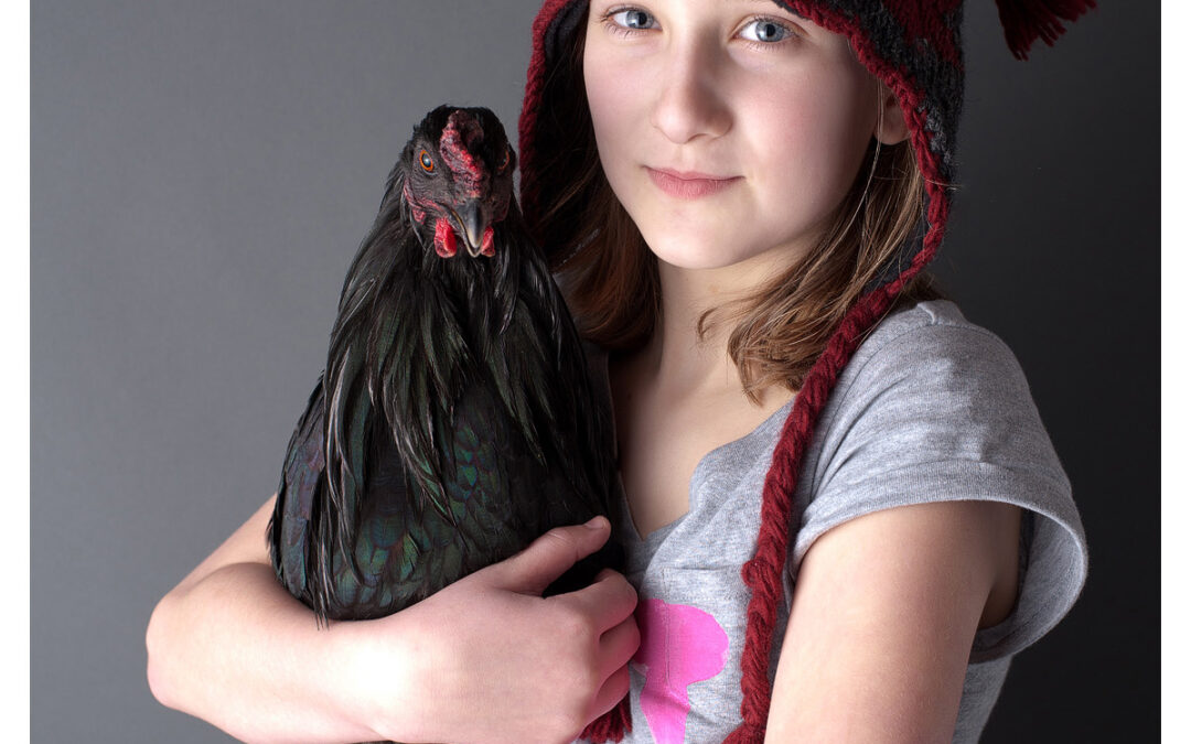 A Rooster named Hawk…Baraboo Family Photographer